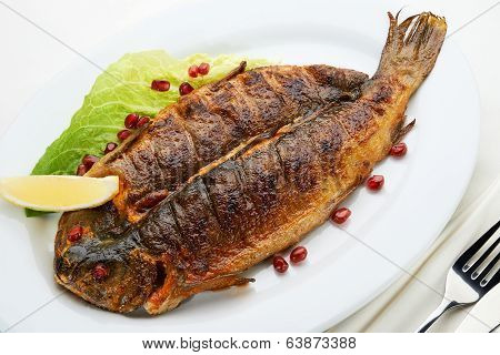 Trout Grill
