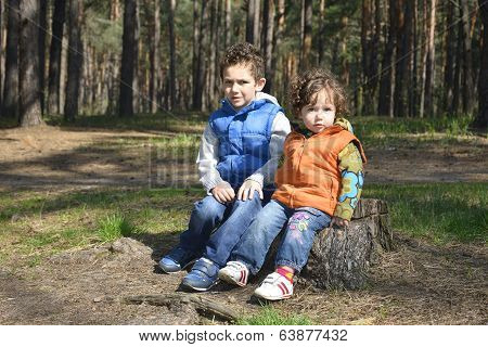 Little Brother And Sister Sitting On A Stump.