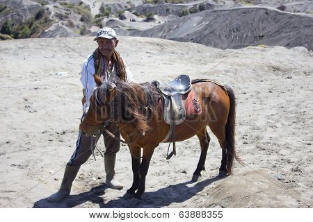 Indonesia Man With The Horse