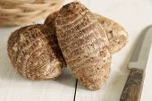 image of taro corms  - Eddoe or Eddo is a tropical root vegetable a variety of Colocasia esculenta closely related to Taro  - JPG