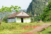 stock photo of tobacco barn  - Rural scene with a rustic house known as bohio at the Vinales Valley in Cuba - JPG