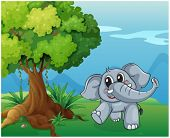 picture of beside  - Illustration of an elephant beside the tree - JPG