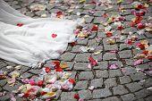 foto of wedding feast  - Close - JPG