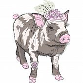 stock photo of pot bellied pig  - sketch closeup portrait of black fashionable funny Pot - JPG