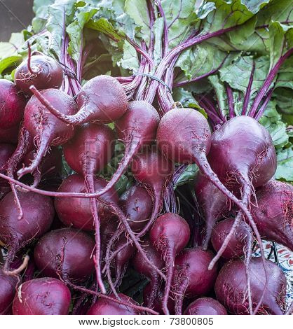 Colorful Beets at Farmers' Market