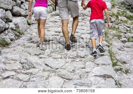 Walking On The Mountain Trail