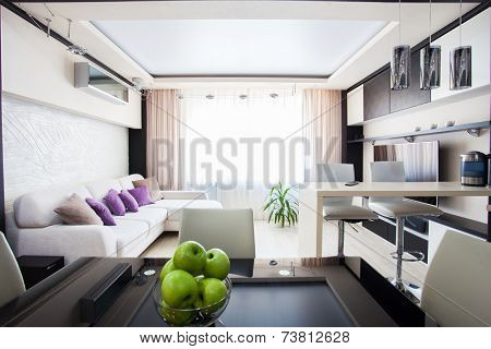 Interior kitchen. Modern parlour. Hall