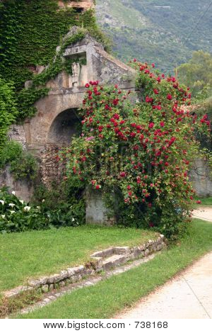 Ruins at Ninfa Garden