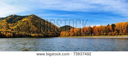 Autumn Taiga