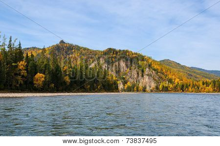 Siberian Taiga Fall