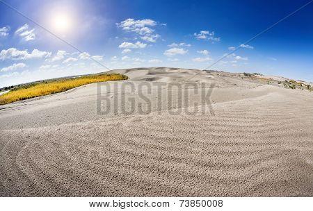 Dune Near The Lake