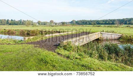 Cattle Bridge Over A Small River