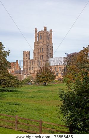 Ely Cathedral and Dean's Meadow, Cambridgeshire