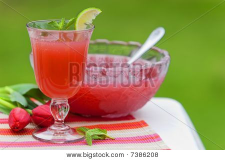 Refreshing Juice Cocktail Drink