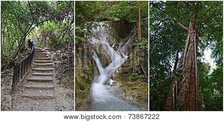 Nature In Erawan National Park