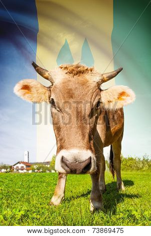 Cow With Flag On Background Series - Saint Vincent And The Grenadines