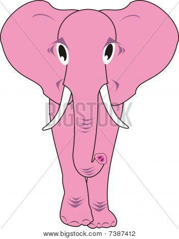 Pink elephant isolated
