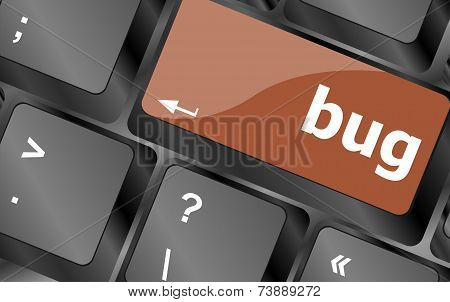 Computer Keyboard With Bug Key. Business Concept