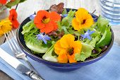 stock photo of borage  - Fresh summer salad with edible flowers nasturtium - JPG