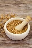image of mustard seeds  - Mustard seeds in wooden mortar and mustard in white bowl with copy space - JPG