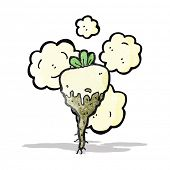 picture of turnips  - cartoon turnip - JPG