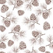 pic of fir  - Pine fir christmas tree cedar spruce and cones seamless pattern vector illustration - JPG