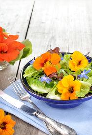 foto of borage  - Fresh summer salad with edible flowers nasturtium borage flowers in a bowl - JPG