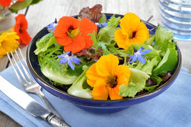 picture of borage  - Fresh summer salad with edible flowers nasturtium - JPG