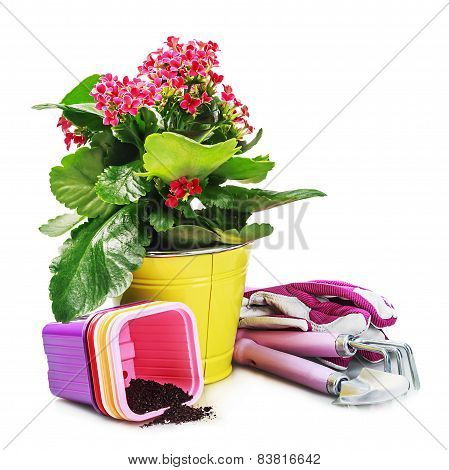 Garden Tools With Flowers Isolated