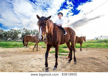 Child With A Horse.