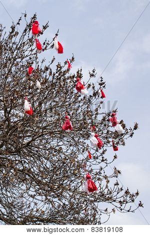 Bulgarian Traditional Custom Spring Sign Martenitsa On The Tree