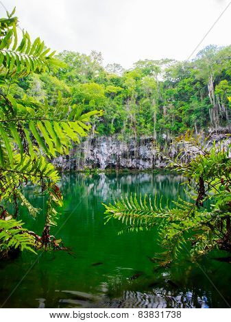 Cenote Of Santo Domingo