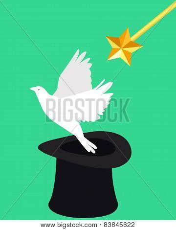 Magic and dove. Wizard hat and magic wand. Vector illustration