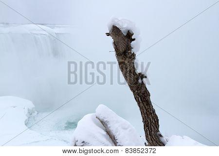 Frozen Driftwood At Niagara Falls In Winter