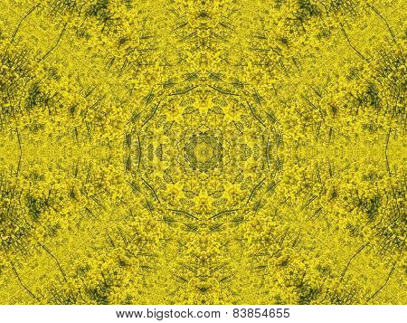 Yellow Rapeseed Kaleidoscope