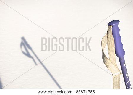 The ski pole