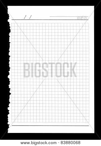 Torn Notebook Sheet