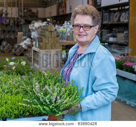 Elderly woman buying heather in garden shop