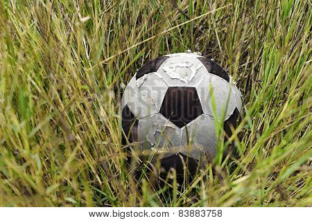 Football Ball On The Grass And Flower