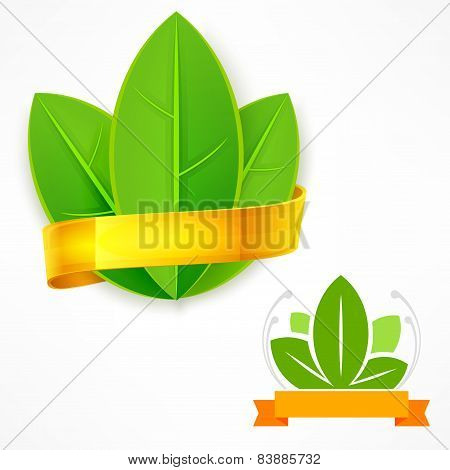 Green Leaf With Ribbon