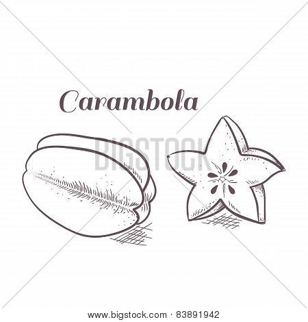 Engraving Carambola In Vector