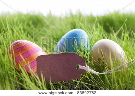 Easter Background With Colorful Easter Eggs And Empty Label