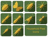 image of cricket insect  - A collection of flat style household pests in vector format - JPG