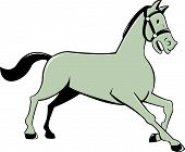 image of bronco  - Illustration of a horse trotting cantering viewed from the side set on isolated white background done in cartoon style - JPG