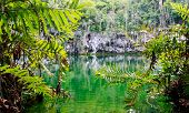 foto of cenote  - Cenote of Santo Domingo in Dominican Republic - JPG