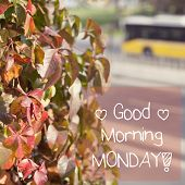 picture of monday  - Inspirational Motivational Quote Phrase Design Background Good Morning Monday - JPG