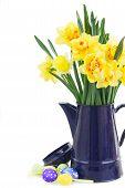 Постер, плакат: Spring Narcissus