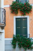 foto of vicenza  - View of a flowered balcony of a wooden window in a house of the town center of Vicenza - JPG