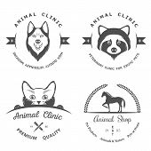 stock photo of petting  - Set of vintage logo and logotype elements for pet shop pet house pet and exotic animals clinic - JPG