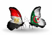 foto of algeria  - Two butterflies with flags on wings as symbol of relations Egypt and Algeria - JPG